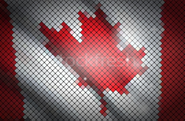 Flag of Canada Stock photo © vtorous