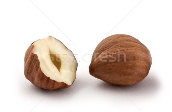 Hazel nut Stock photo © vtorous