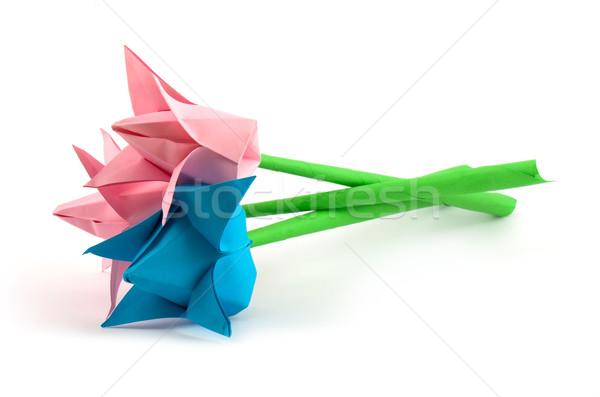 Papier fleur isolé blanche art bleu Photo stock © vtorous