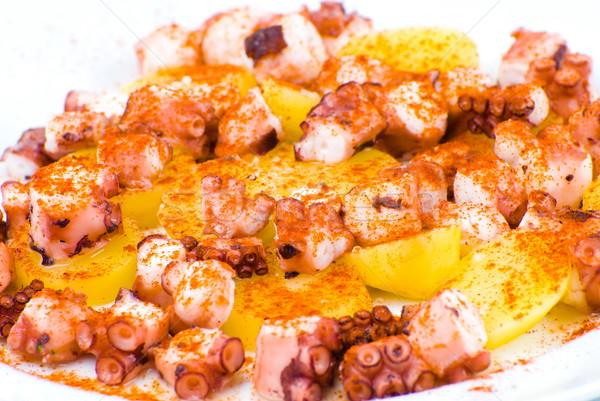 Spaans keuken galicië stijl octopus studio Stockfoto © vtupinamba