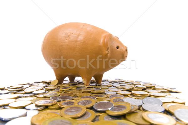 Cerdo moneda banco muchos monedas blanco Foto stock © vtupinamba