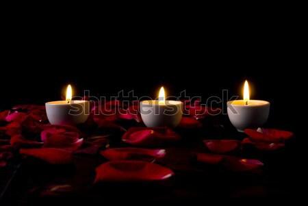 Velas pétalos tres ardor Rose Red diseno Foto stock © vtupinamba