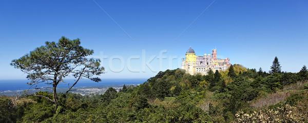 Stock fotó: Panorámakép · kilátás · kastély · kék · szín · panoráma