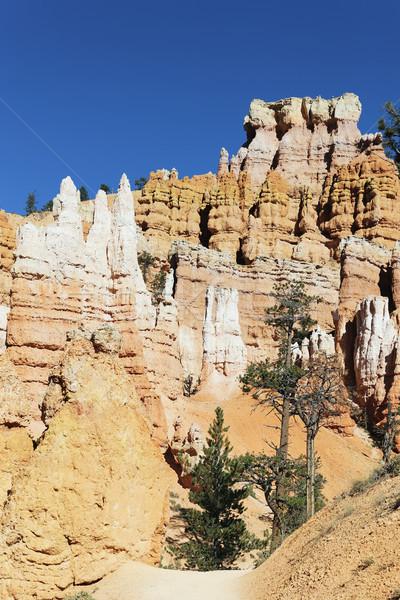 Track at famous Bryce Canyon Stock photo © vwalakte