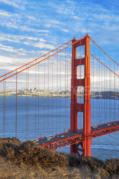 Vertical vista famoso Golden Gate Bridge San Francisco California Foto stock © vwalakte