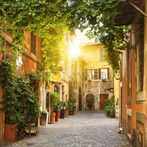 View of Old street in Trastevere in Rome Stock photo © vwalakte