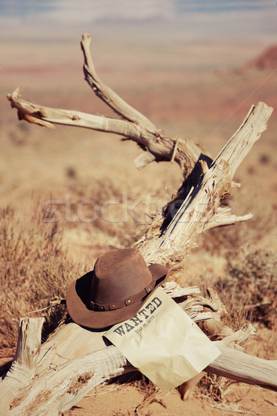 hat on dead wood Stock photo © vwalakte