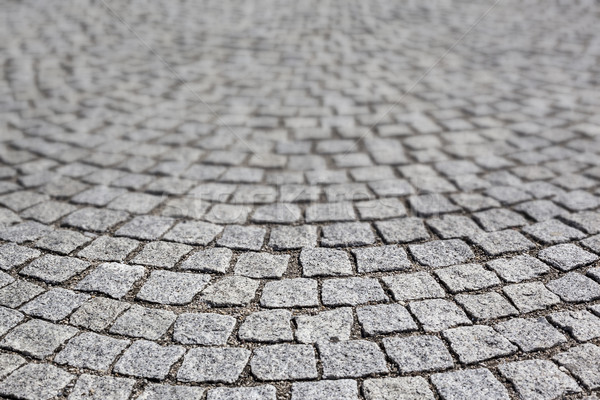 paving stone  Stock photo © vwalakte