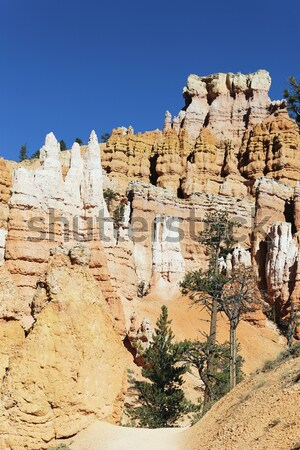 famous view of Bryce Canyon Stock photo © vwalakte