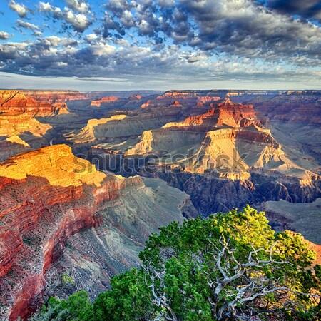 Mozzafiato Grand Canyon view sunrise USA tramonto Foto d'archivio © vwalakte