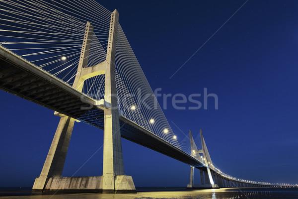 Vasco da Gama bridge by night Stock photo © vwalakte