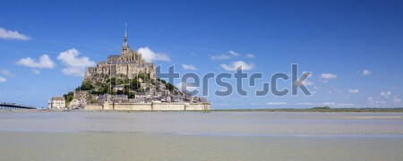 Mont-Saint-Michel and green grass Stock photo © vwalakte