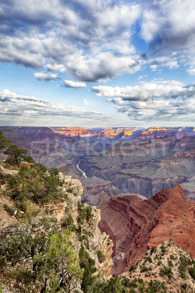 view of Grand Canyon and Colorado river Stock photo © vwalakte