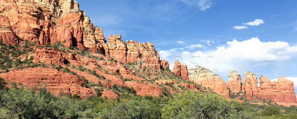 panoramic view of wilderness landscape Stock photo © vwalakte
