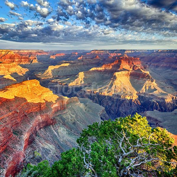 Manhã luz Grand Canyon Arizona EUA pôr do sol Foto stock © vwalakte
