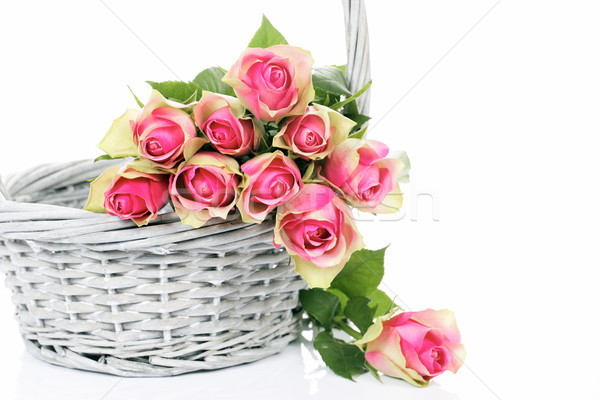 pink roses in the Basket Stock photo © vwalakte