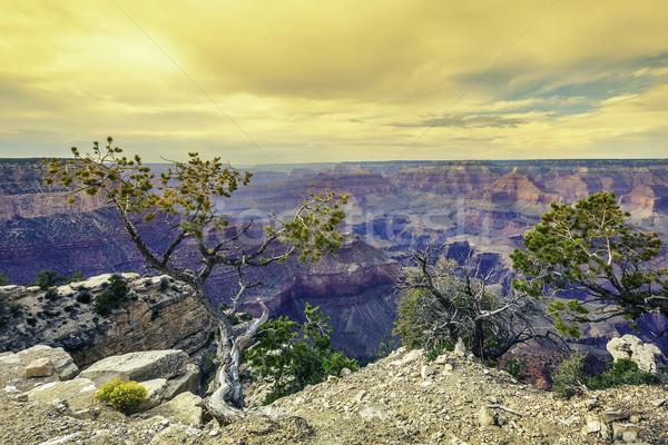 Morning light at Grand Canyon Stock photo © vwalakte