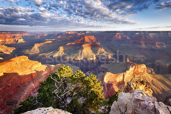 Ver Grand Canyon EUA pôr do sol natureza Foto stock © vwalakte