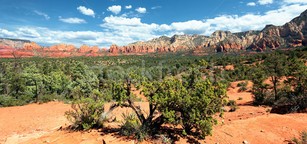 panoramic Arizona Stock photo © vwalakte