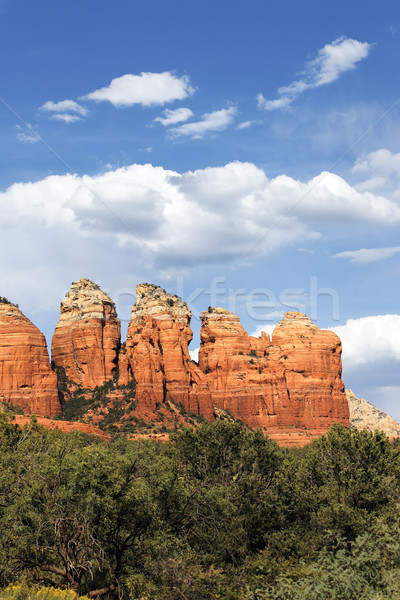 wilderness landscape Stock photo © vwalakte