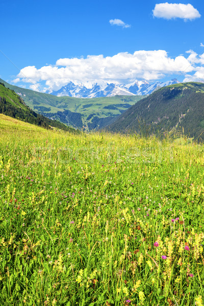 landscape of french Alps Stock photo © vwalakte