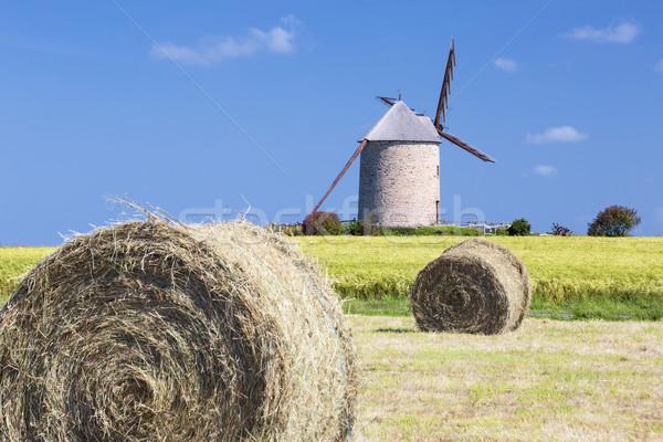 Windmill, wheat field and straw Stock photo © vwalakte