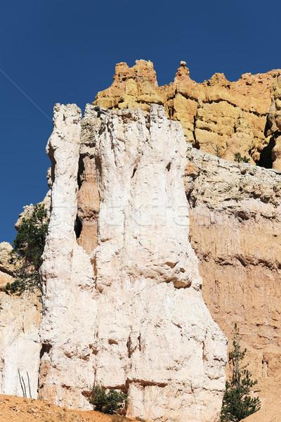 Famous hoodoo rocks Stock photo © vwalakte