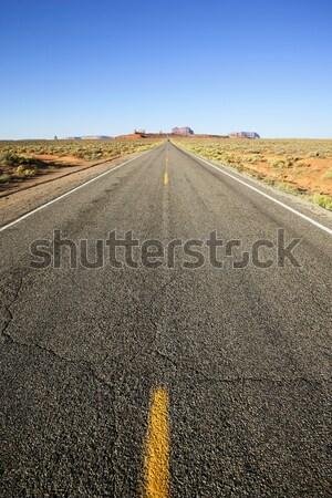 vertical view of long american road, USA Stock photo © vwalakte