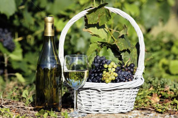 white wine spirit Stock photo © vwalakte