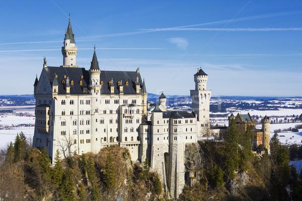 Neuschwanstein Castle Stock photo © vwalakte