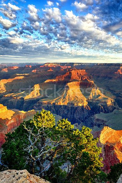 Grand Canyon napfelkelte Arizona USA naplemente természet Stock fotó © vwalakte