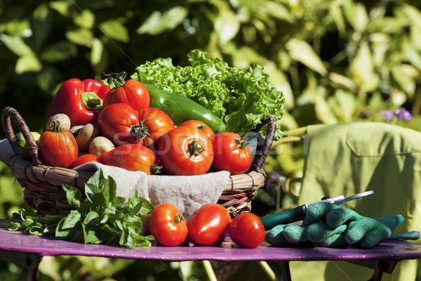 Groenten mand zonlicht voedsel hout tuin Stockfoto © vwalakte