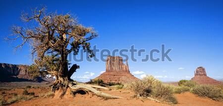 Monument Valley Navajo Tribal Park Stock photo © vwalakte