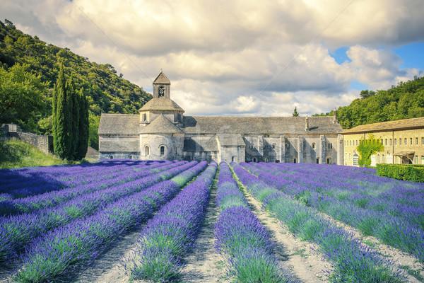 Abdij ochtend licht Frankrijk Europa natuur Stockfoto © vwalakte