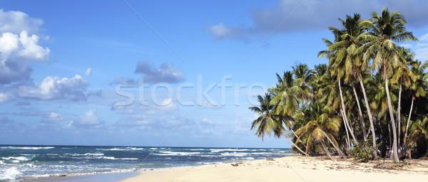 panoramic view of caribbean beach  Stock photo © vwalakte