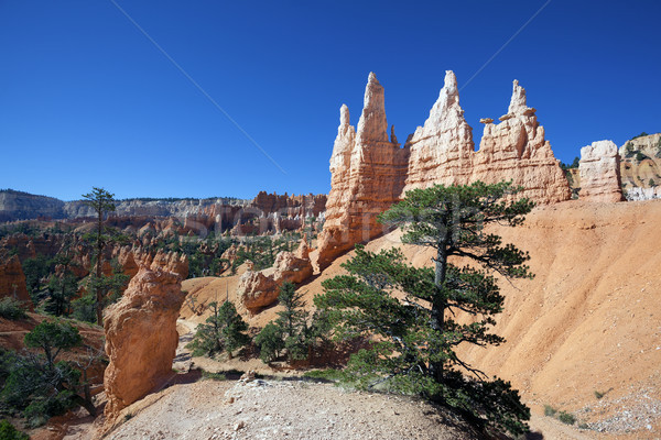 view of famous Navajo Trail  Stock photo © vwalakte
