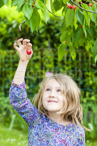 girl with cherry in the hand Stock photo © vwalakte