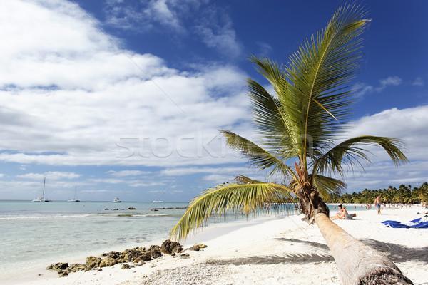 sun on the beach Stock photo © vwalakte