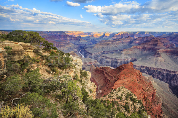 view of Grand Canyon with morning light Stock photo © vwalakte