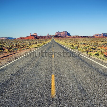 Famous long Road to the Monument Valley Stock photo © vwalakte