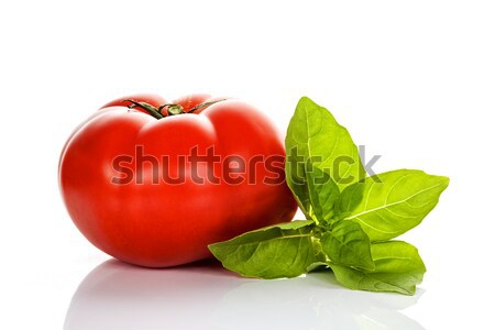 Tomato and basil Stock photo © vwalakte