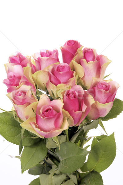 beautiful bouquet of pink roses Stock photo © vwalakte