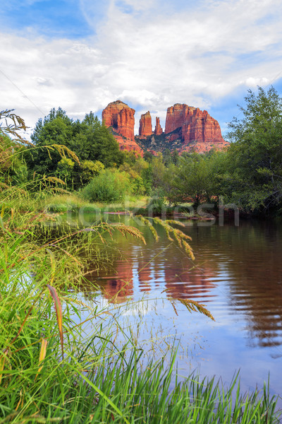 View of cathedral rock Stock photo © vwalakte