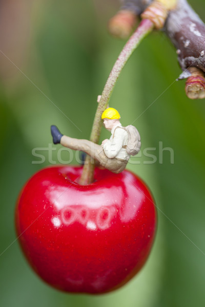 Cherry with mountaineer Stock photo © vwalakte