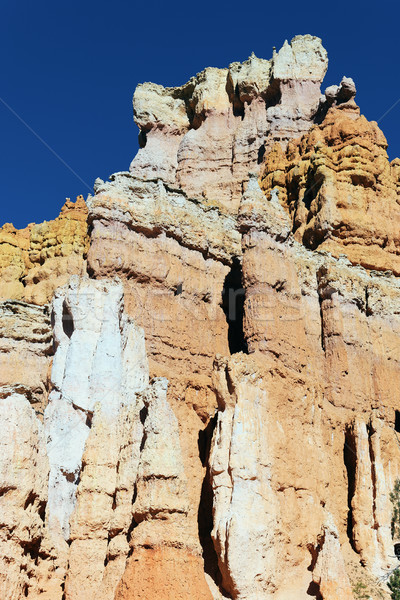 vertical view of famous hoodoo rocks Stock photo © vwalakte