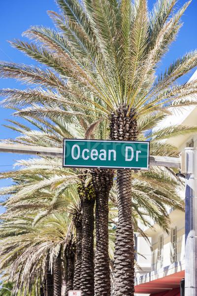 Beroemd straat Miami strand boom verf Stockfoto © vwalakte