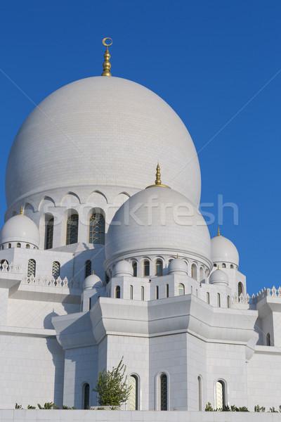 белый мечети Абу-Даби небе дерево дизайна Сток-фото © vwalakte