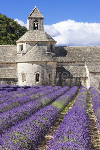 Abbey of Senanque Stock photo © vwalakte