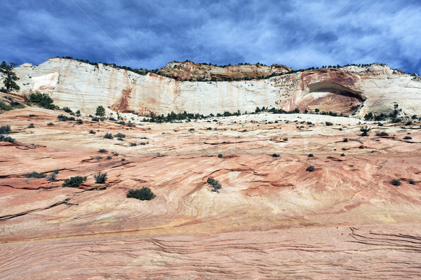 Beautiful slopes of Zion canyon Stock photo © vwalakte