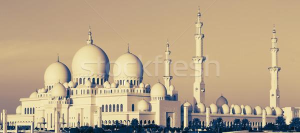 панорамный мнение мечети Абу-Даби небе дерево Сток-фото © vwalakte